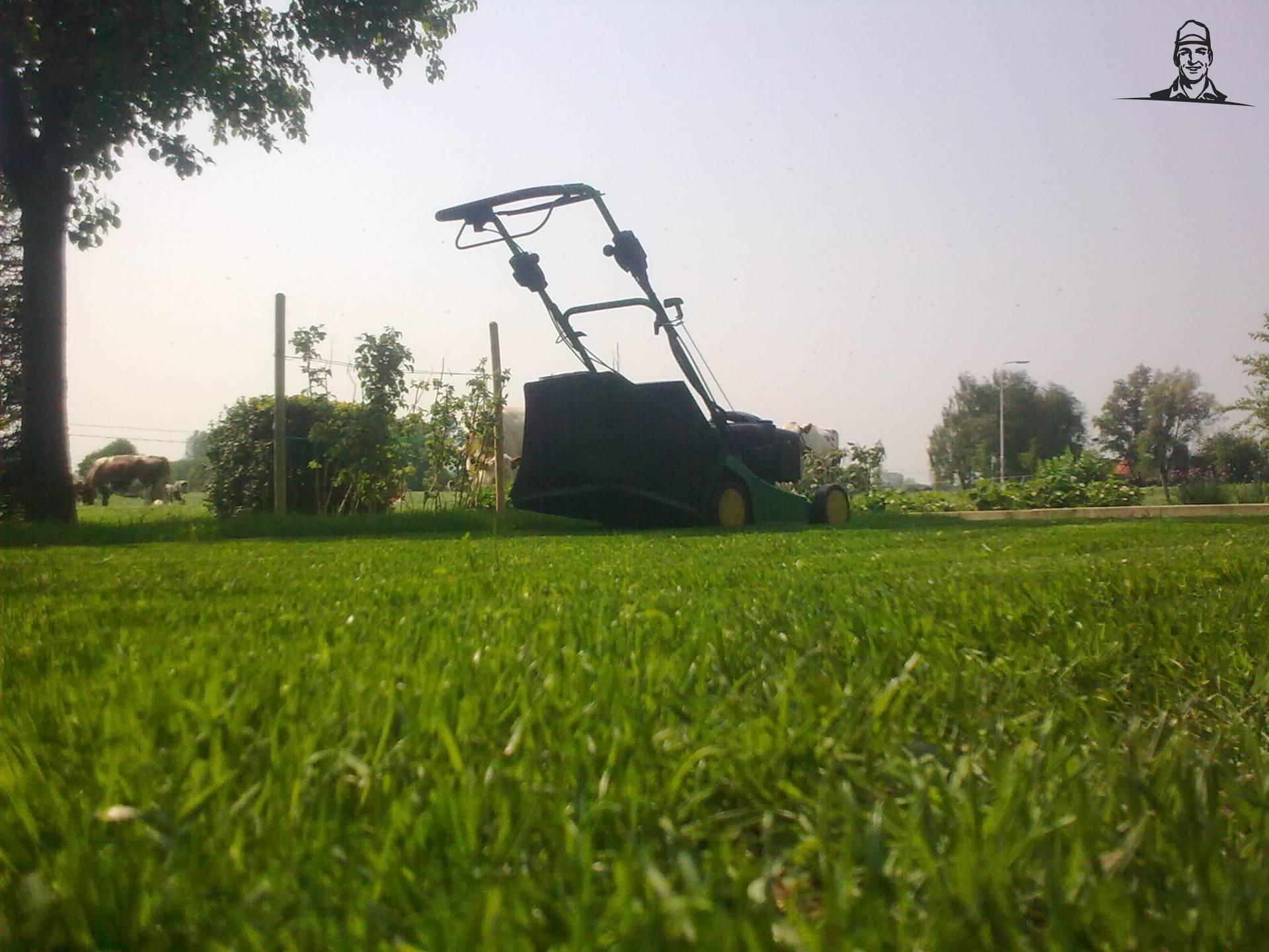 Vorig jaar gras van Deere Hunter