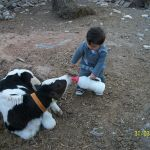 mijn neefje eymen yucel.karaman/TURKIJE